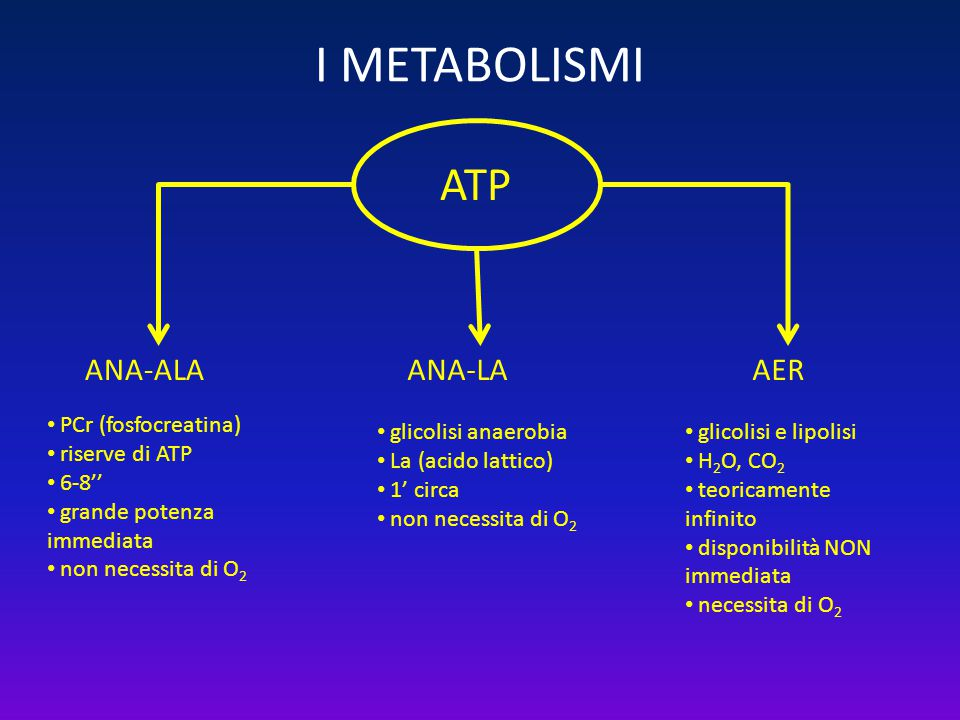 I METABOLISMI ATP ANA-ALA ANA-LA AER PCr (fosfocreatina)