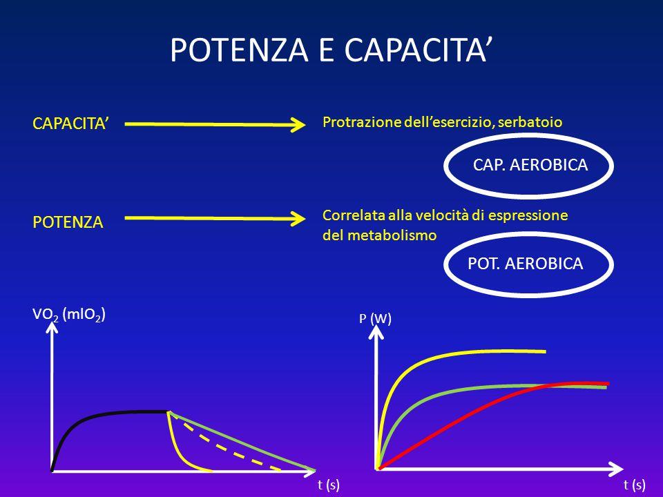 POTENZA E CAPACITA' CAPACITA' CAP. AEROBICA POTENZA POT. AEROBICA