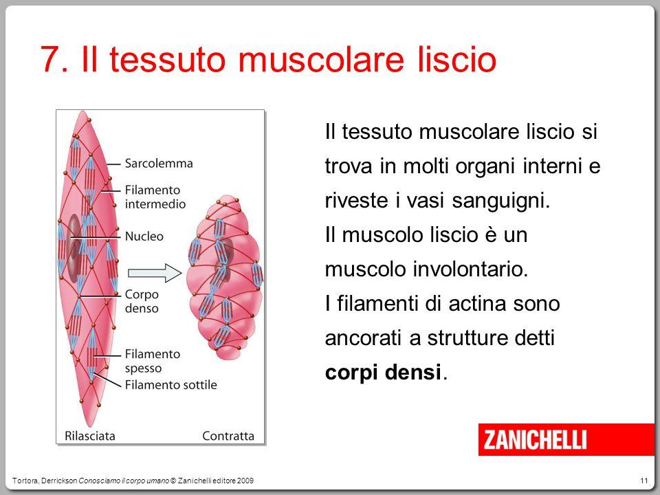 7. Il tessuto muscolare liscio