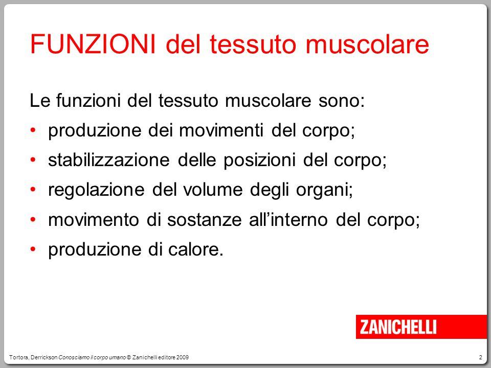 FUNZIONI del tessuto muscolare