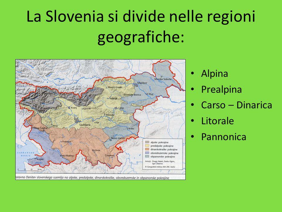 La Slovenia si divide nelle regioni geografiche: