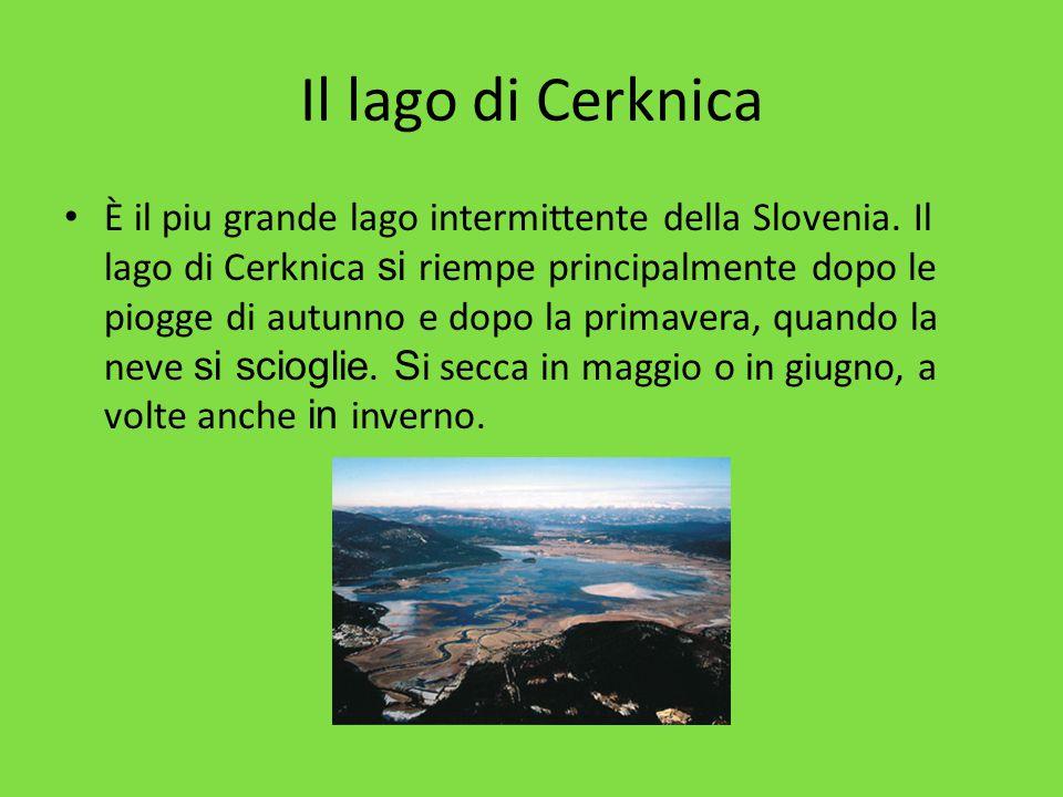 Il lago di Cerknica