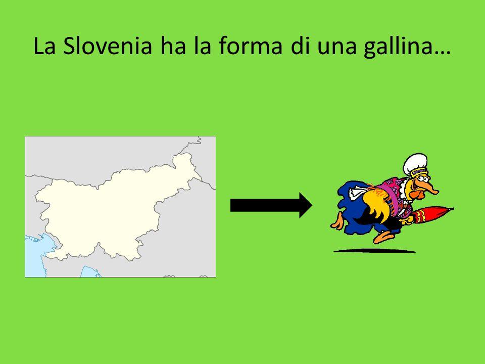 La Slovenia ha la forma di una gallina…