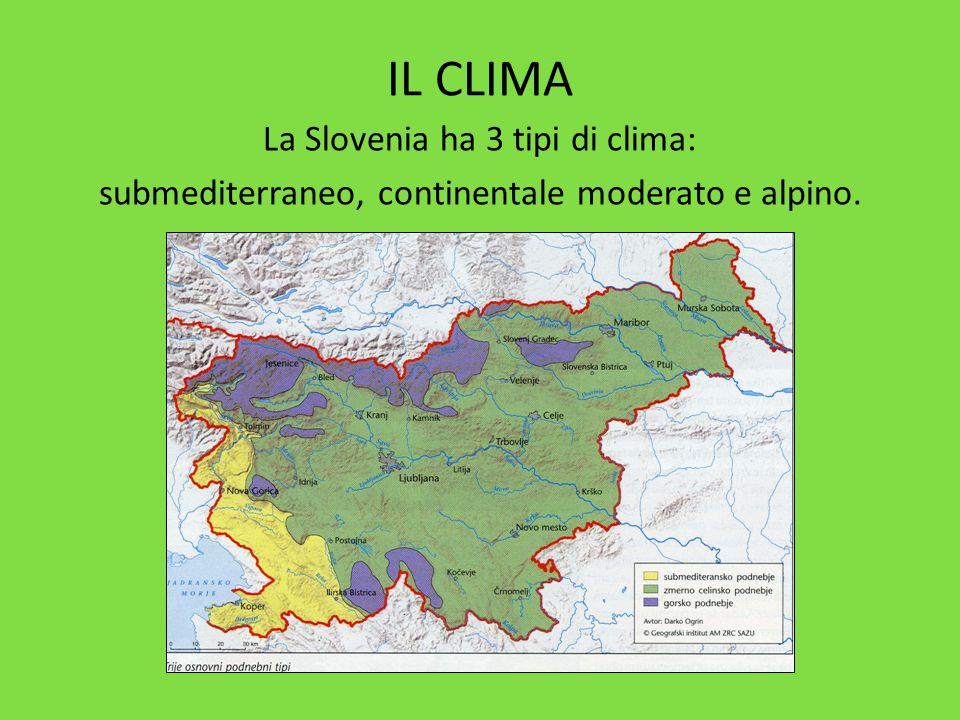 IL CLIMA La Slovenia ha 3 tipi di clima: