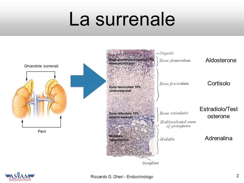 Estradiolo/Testosterone