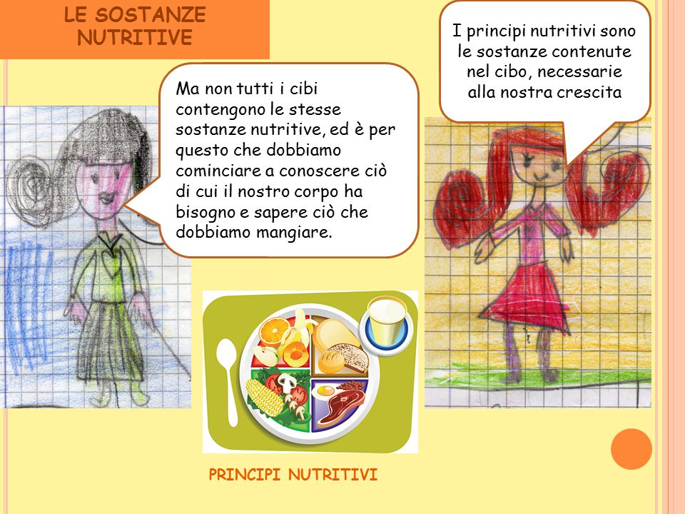 LE SOSTANZE NUTRITIVE I principi nutritivi sono le sostanze contenute nel cibo, necessarie alla nostra crescita.