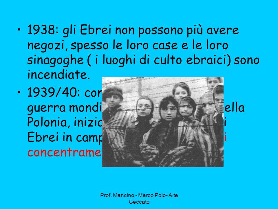 Prof. Mancino - Marco Polo- Alte Ceccato