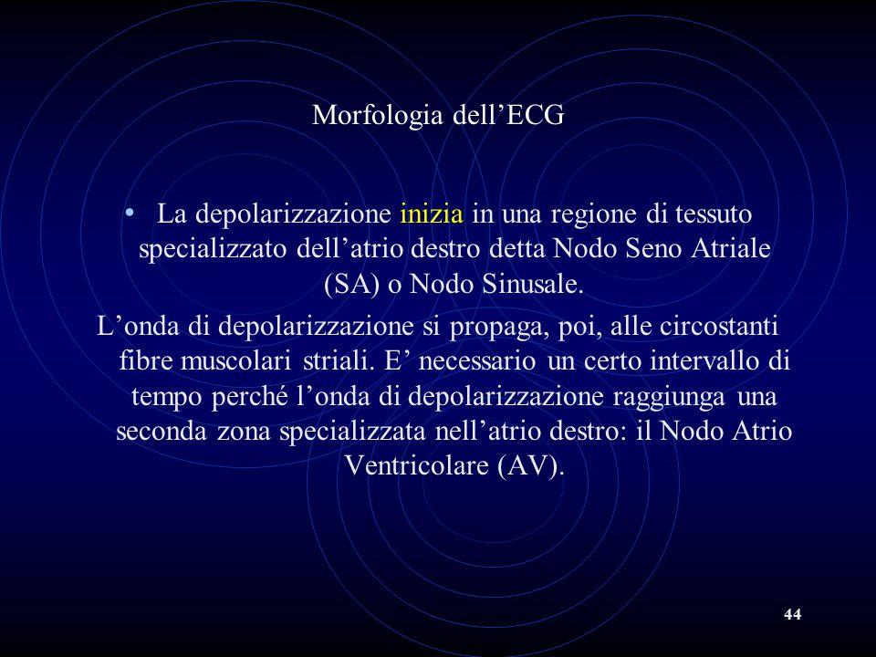 Morfologia dell'ECG
