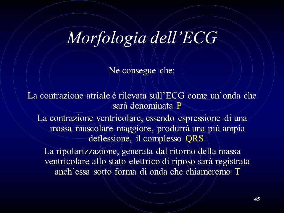 Morfologia dell'ECG Ne consegue che: