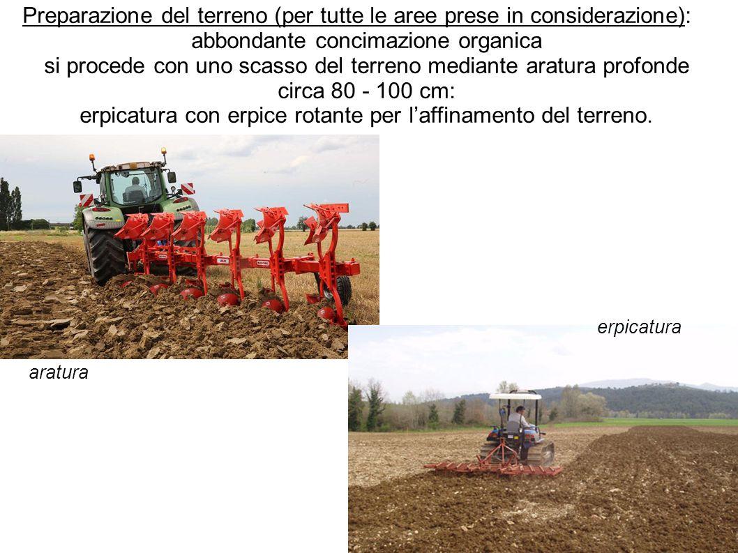 Preparazione del terreno (per tutte le aree prese in considerazione):