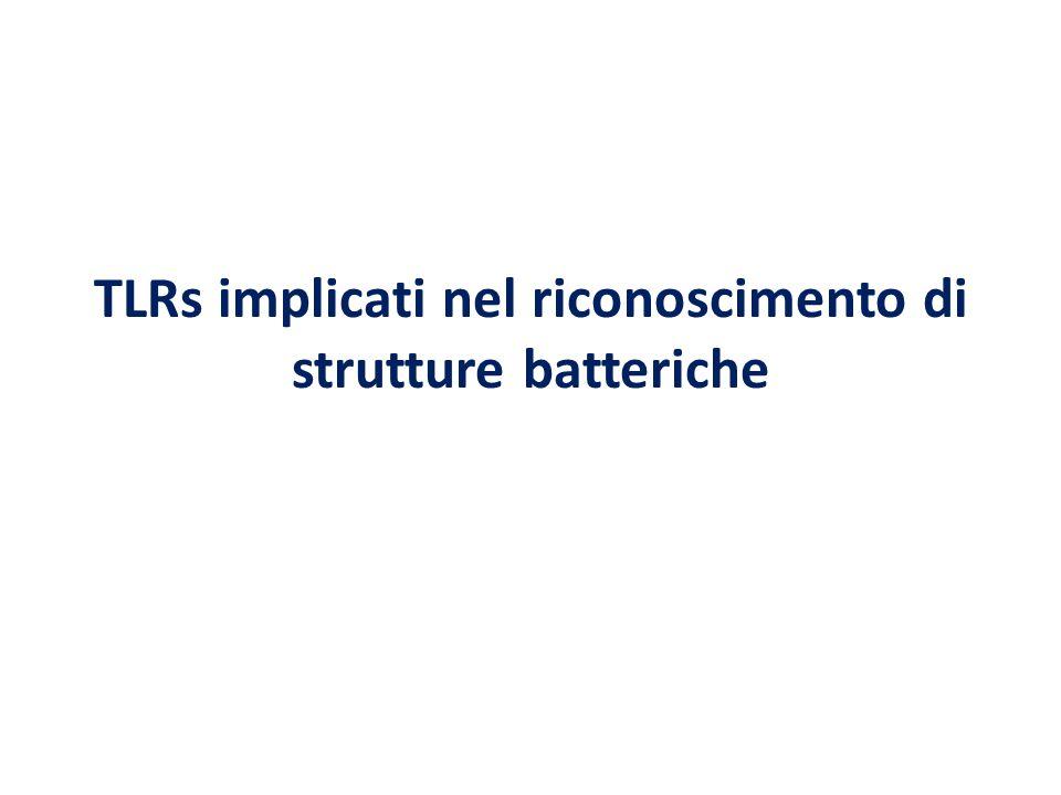 TLRs implicati nel riconoscimento di strutture batteriche