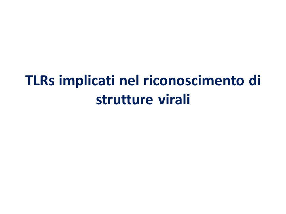 TLRs implicati nel riconoscimento di strutture virali