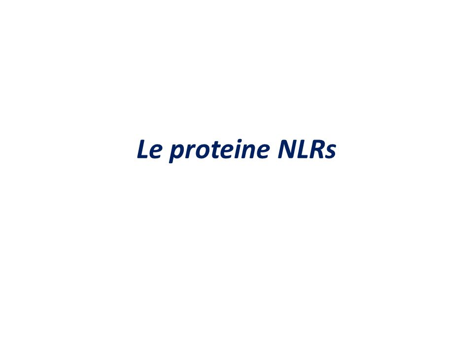 Le proteine NLRs