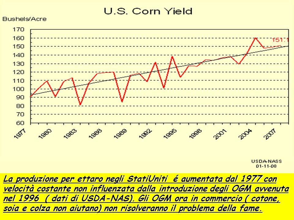 La produzione per ettaro negli StatiUniti é aumentata dal 1977 con velocità costante non influenzata dalla introduzione degli OGM avvenuta nel 1996 ( dati di USDA-NAS).
