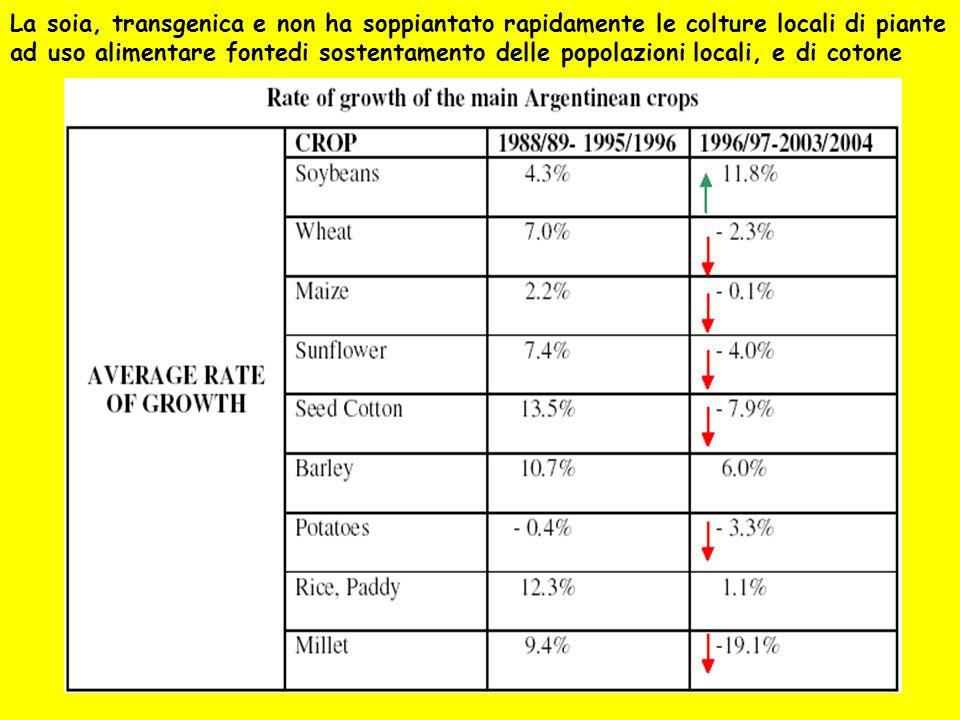 La soia, transgenica e non ha soppiantato rapidamente le colture locali di piante ad uso alimentare fontedi sostentamento delle popolazioni locali, e di cotone