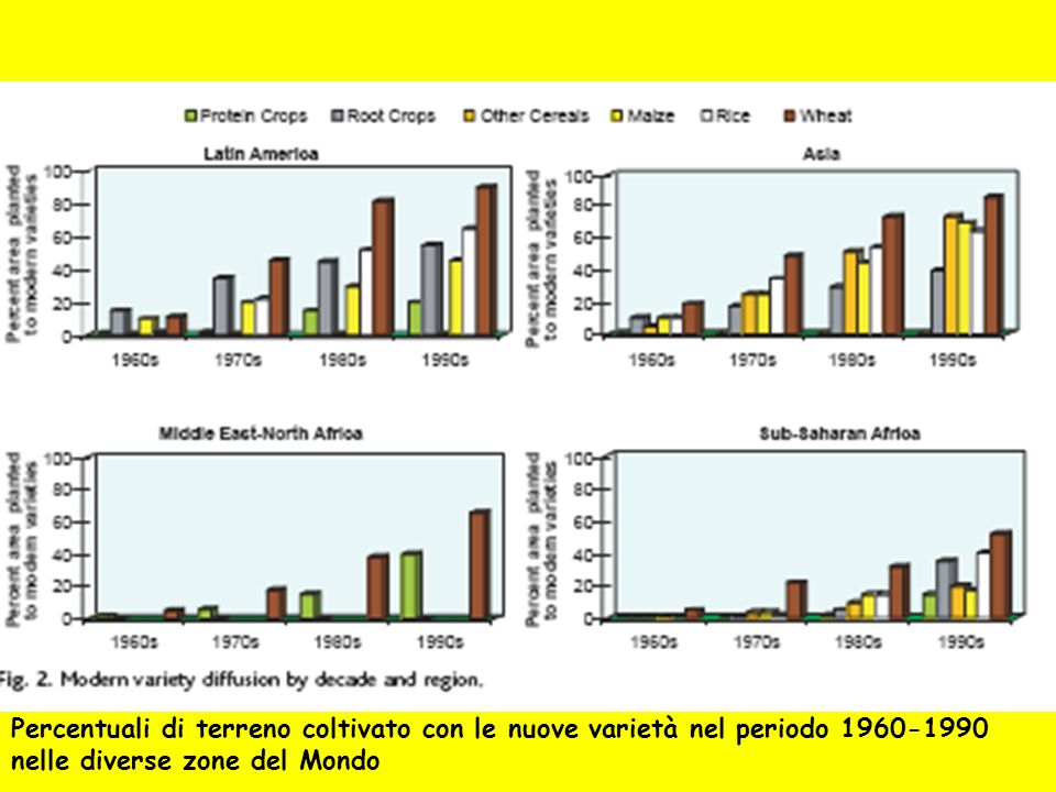 Percentuali di terreno coltivato con le nuove varietà nel periodo 1960-1990 nelle diverse zone del Mondo