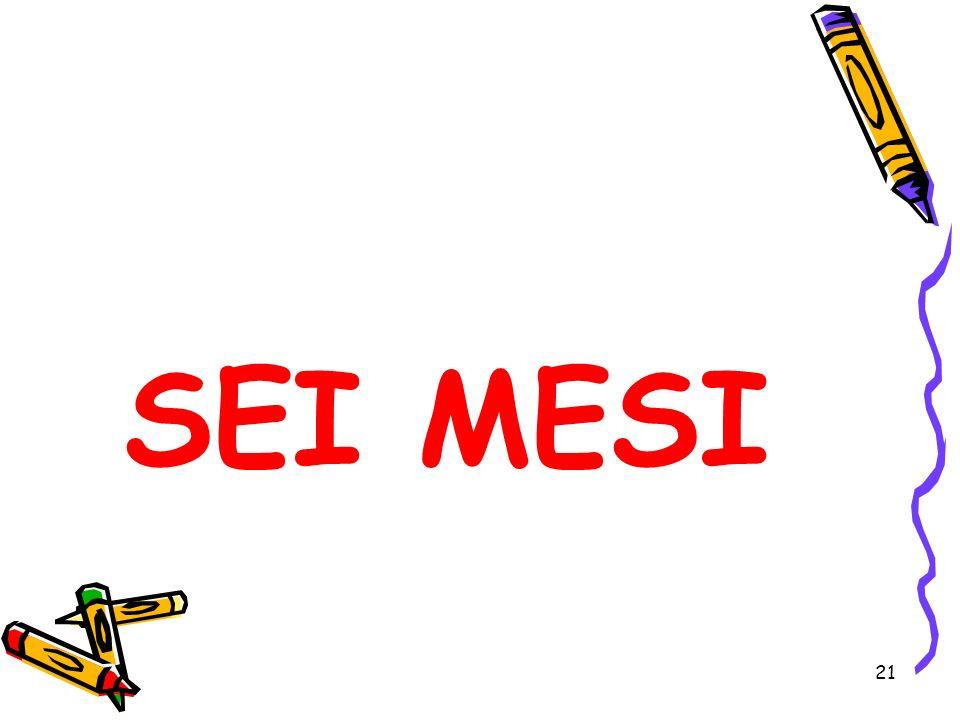 SEI MESI