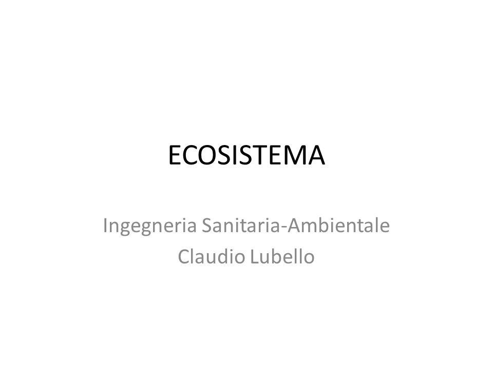 Ingegneria Sanitaria-Ambientale Claudio Lubello