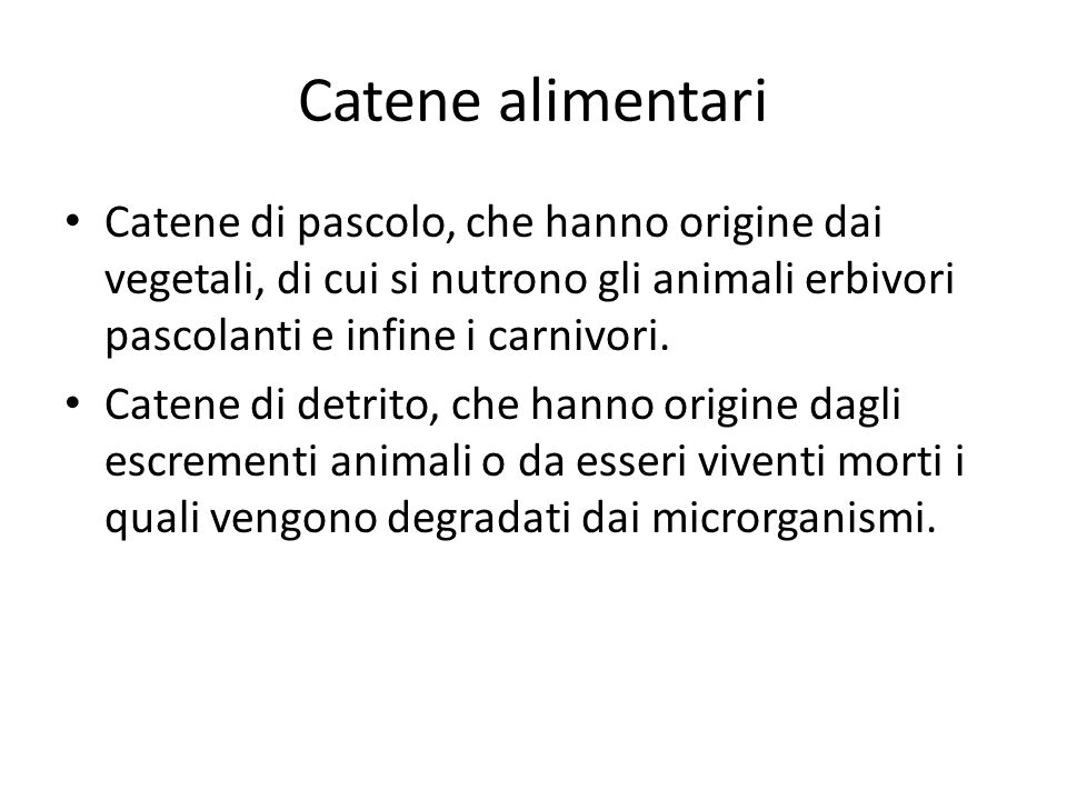 Catene alimentari Catene di pascolo, che hanno origine dai vegetali, di cui si nutrono gli animali erbivori pascolanti e infine i carnivori.