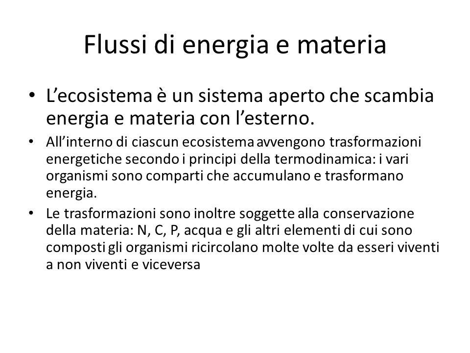 Flussi di energia e materia