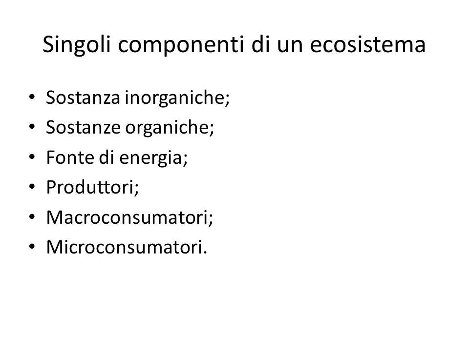 Singoli componenti di un ecosistema