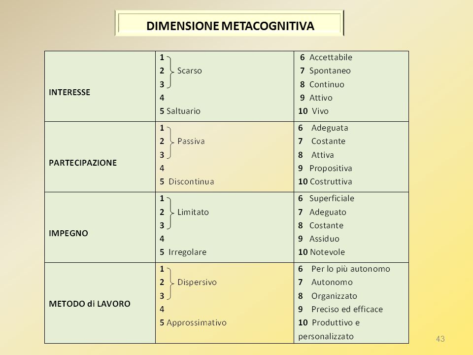 DIMENSIONE METACOGNITIVA