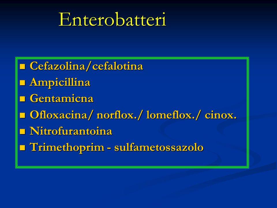 Enterobatteri Cefazolina/cefalotina Ampicillina Gentamicna
