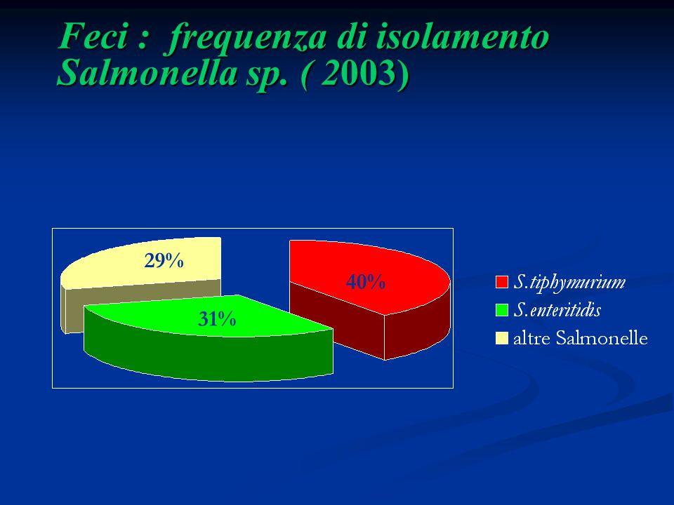 Feci : frequenza di isolamento Salmonella sp. ( 2003)