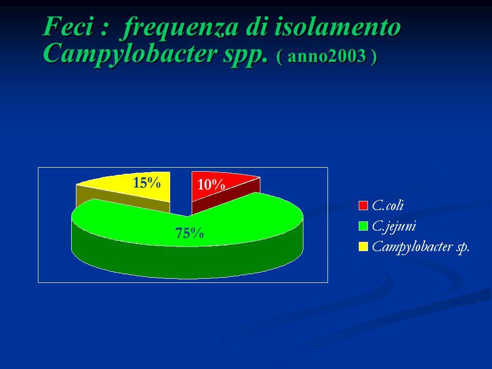 Feci : frequenza di isolamento Campylobacter spp. ( anno2003 )