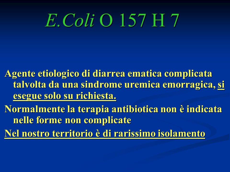 E.Coli O 157 H 7 Agente etiologico di diarrea ematica complicata talvolta da una sindrome uremica emorragica, si esegue solo su richiesta.