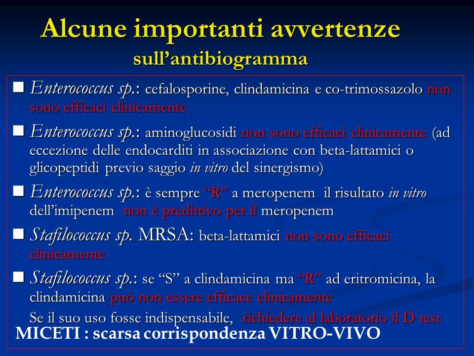 Alcune importanti avvertenze sull'antibiogramma