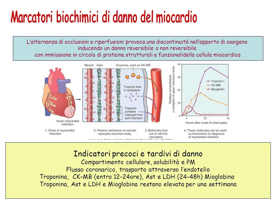 Marcatori biochimici di danno del miocardio