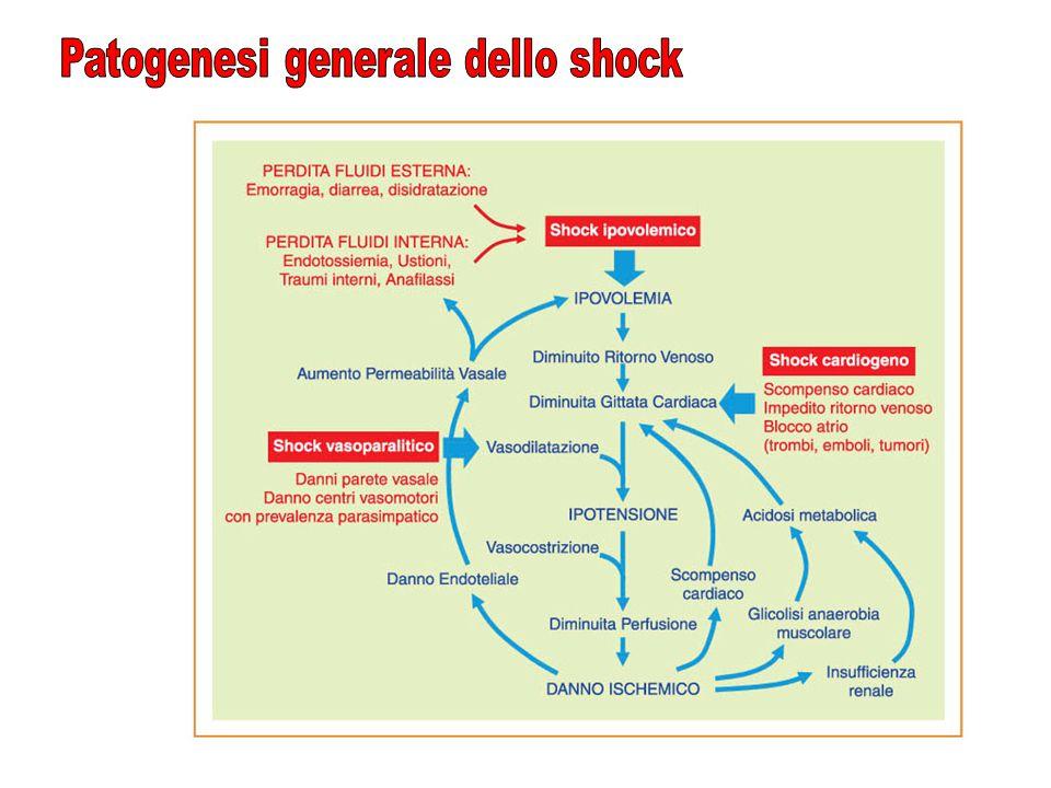 Patogenesi generale dello shock
