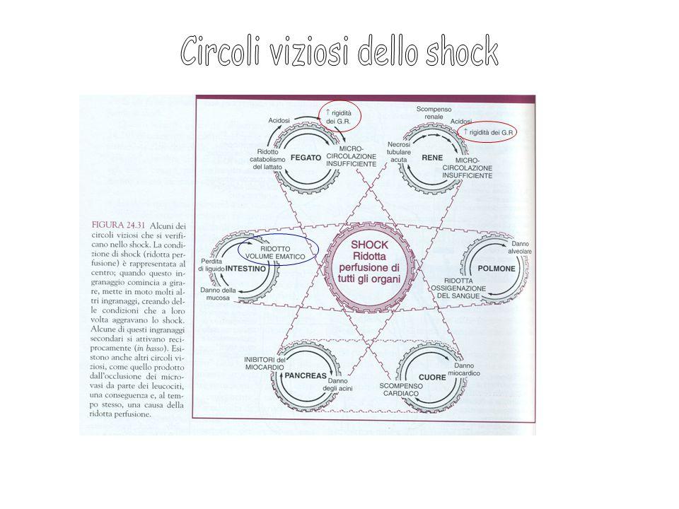 Circoli viziosi dello shock