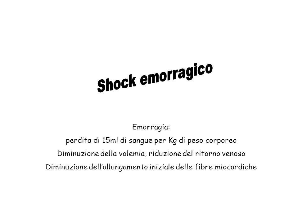 Shock emorragico Emorragia: