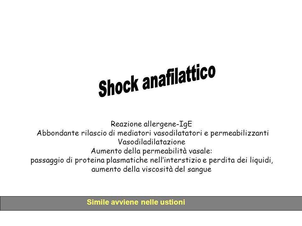 Shock anafilattico Reazione allergene-IgE