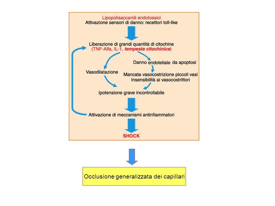 Occlusione generalizzata dei capillari