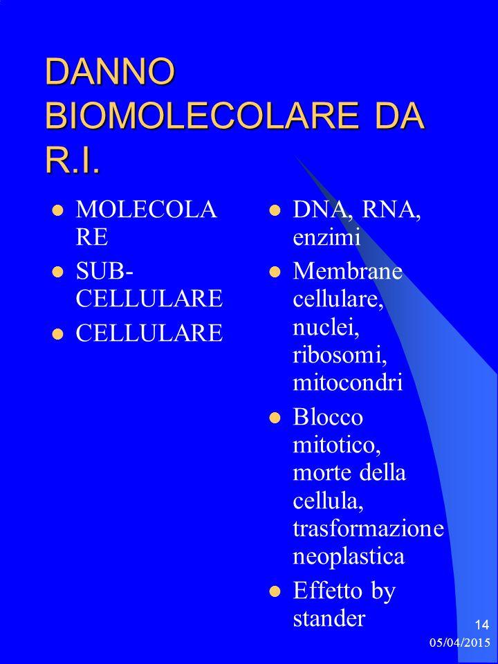 DANNO BIOMOLECOLARE DA R.I.