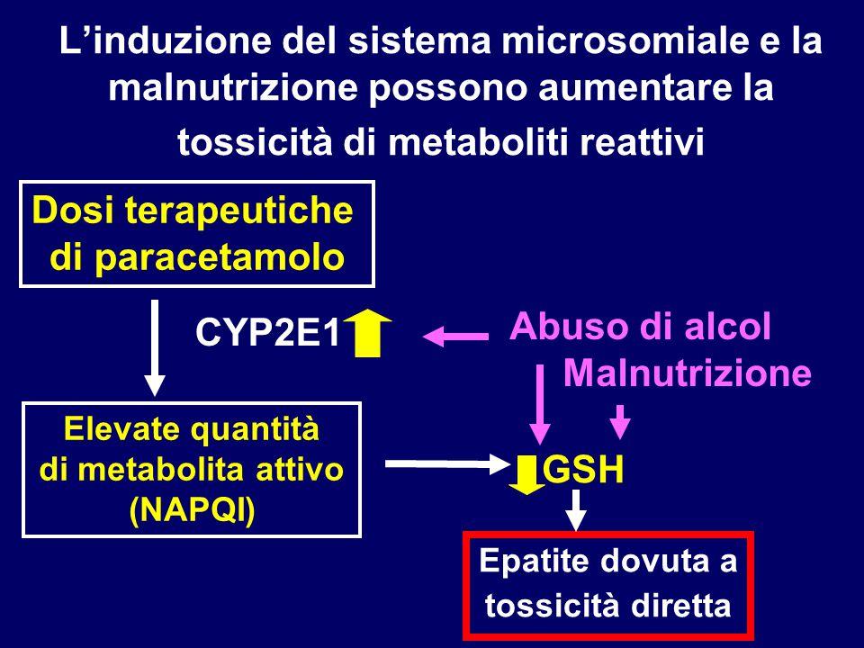 Dosi terapeutiche di paracetamolo GSH