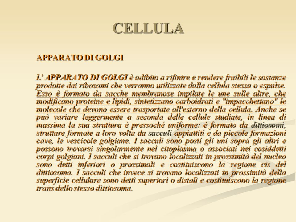 CELLULA APPARATO DI GOLGI