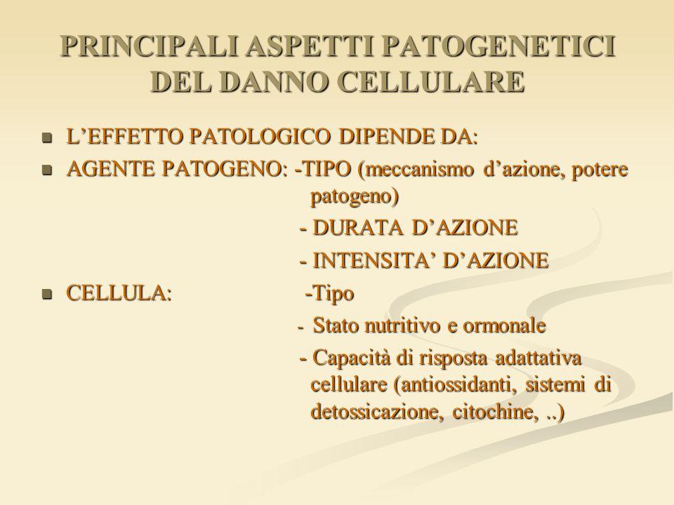 PRINCIPALI ASPETTI PATOGENETICI DEL DANNO CELLULARE