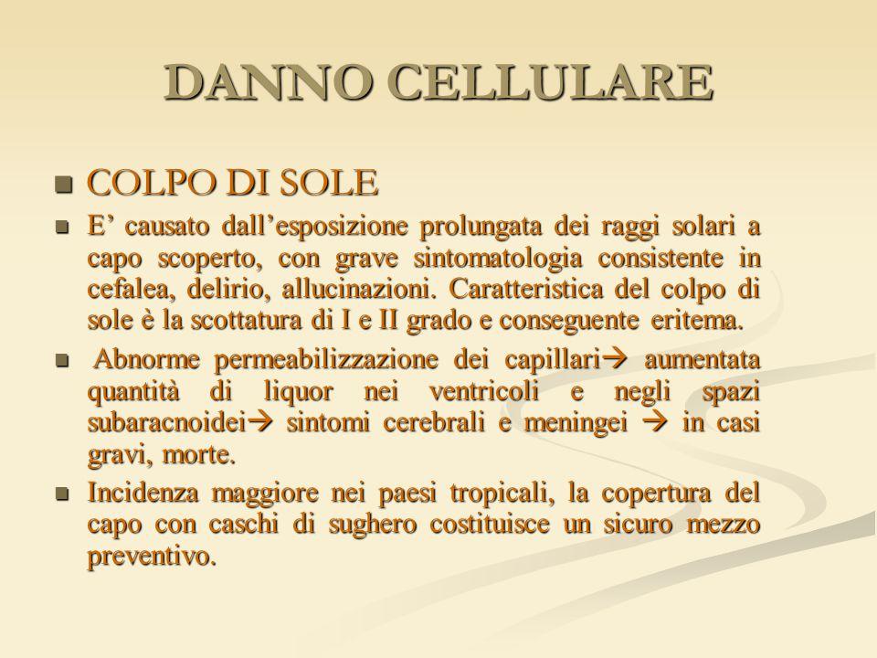 DANNO CELLULARE COLPO DI SOLE