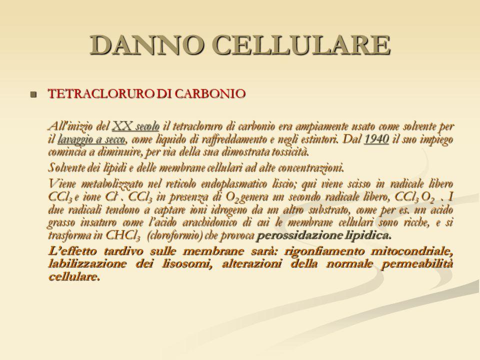 DANNO CELLULARE TETRACLORURO DI CARBONIO