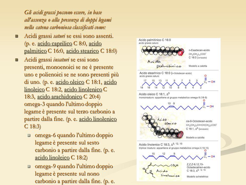 Gli acidi grassi possono essere, in base all assenza o alla presenza di doppi legami nella catena carboniosa classificati come: