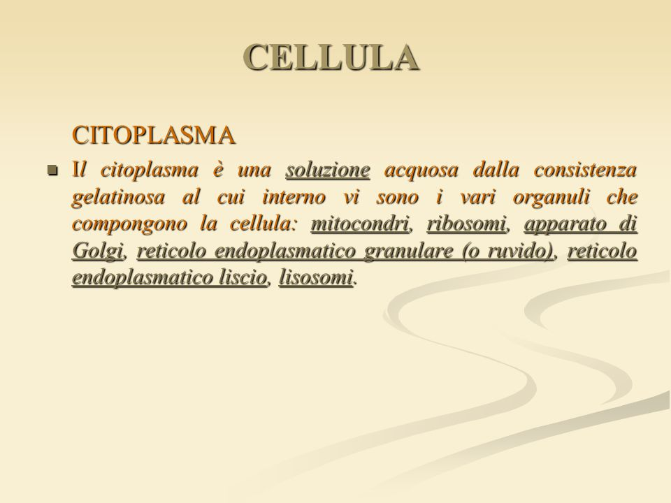 CELLULA CITOPLASMA.