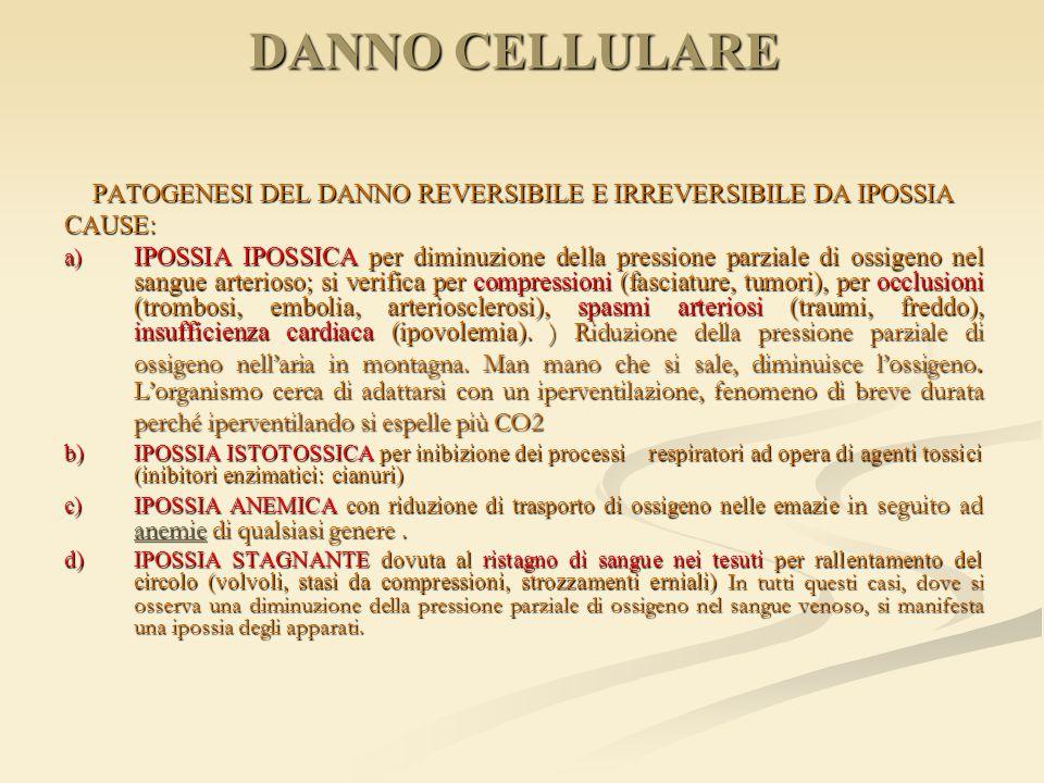 PATOGENESI DEL DANNO REVERSIBILE E IRREVERSIBILE DA IPOSSIA