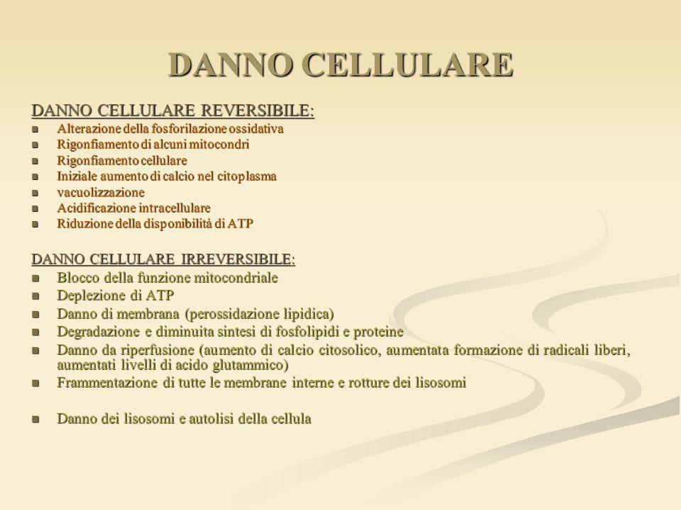 DANNO CELLULARE DANNO CELLULARE REVERSIBILE:
