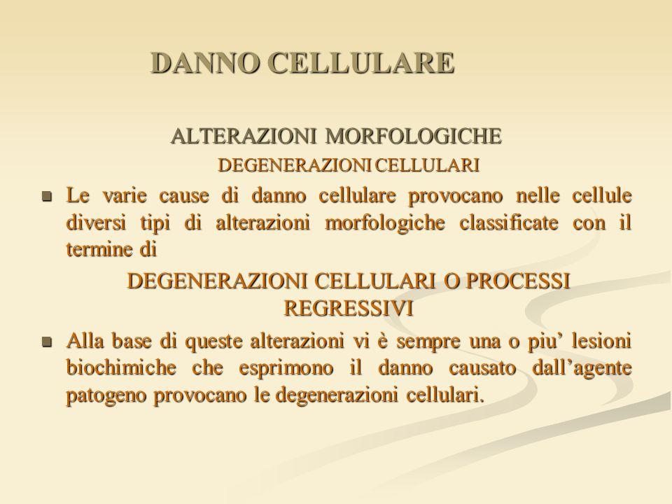 DANNO CELLULARE ALTERAZIONI MORFOLOGICHE
