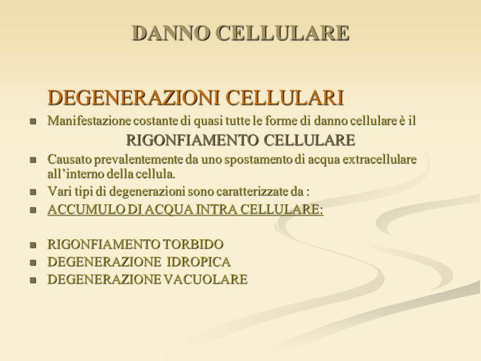 RIGONFIAMENTO CELLULARE