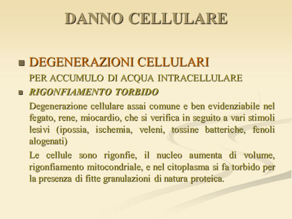 DANNO CELLULARE DEGENERAZIONI CELLULARI